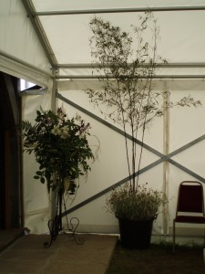 1.8.2009. large stand arrangement & black bamboo with wild flowers